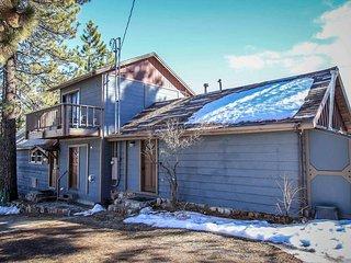 1581-1-Arctic Fox - Big Bear Lake vacation rentals