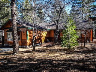 Angel's Camp Retreat~Cozy Furnishings & Fireplace~Equipped Kitchen~Pets Ok - Big Bear City vacation rentals
