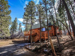 Cozy House with Central Heating and Fireplace - Big Bear City vacation rentals
