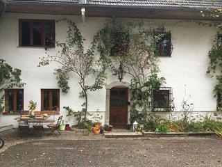 Beautiful 2 bedroom Condo in Gramastetten - Gramastetten vacation rentals