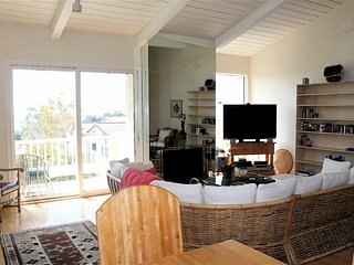 Bright 1 bedroom Condo in Malibu - Malibu vacation rentals