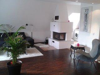 Biz-Apartement in zentraler, ruhiger Lage - Karlsruhe vacation rentals