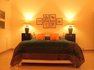 The Assagao House Luxury Villa - Assagao vacation rentals