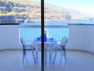 Bright Icod de los Vinos Apartment rental with Internet Access - Icod de los Vinos vacation rentals