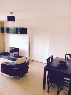 Grand appartement Paris Charenton - Charenton-le-Pont vacation rentals