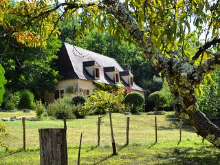 Stone barn with pool in the heart of Dordogne - Le Bugue vacation rentals