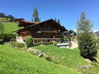 Nice 1 bedroom Condo in Zweisimmen - Zweisimmen vacation rentals