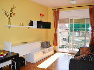 Apartment in Barcelona with Lift, Washing machine (522358) - Barcelona vacation rentals