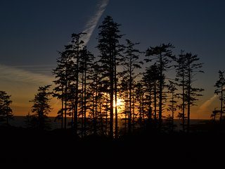 Perfect 2 bedroom Ucluelet Apartment with Internet Access - Ucluelet vacation rentals