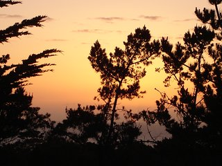 Peaceful Vacation Sanctuary - Ocean + Forest Views - Pebble Beach vacation rentals