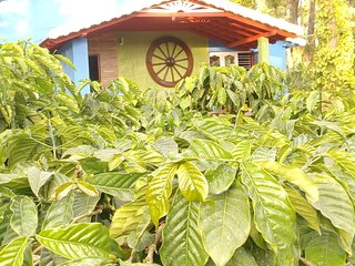 Nature's of Rosewoods homestay - Somvarpet vacation rentals