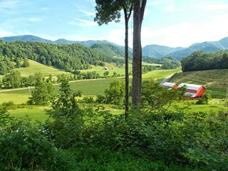 Mystic Valley Cabin-Stunning View, 15 Acres, Secluded & Convenient, Pet Friendly - Asheville vacation rentals