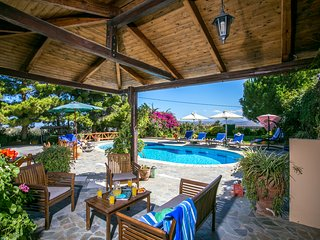 Magnificent villa Agapi for families - Episkopi vacation rentals