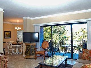Cozy 2 bedroom Hilton Head Villa with Internet Access - Hilton Head vacation rentals