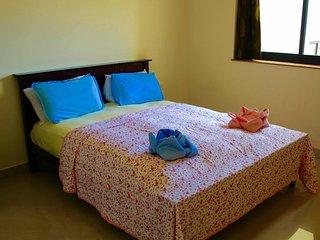 Cozy 2 Bedroom Apartment in Arpora - Arpora vacation rentals