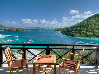 Perfect 3 bedroom Villa in Scrub Island with Internet Access - Scrub Island vacation rentals