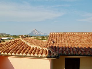 Apartment Fiordaliso - Vaccileddi vacation rentals