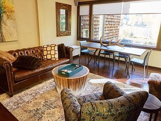 3BR, 3BA High-End Snowmass Townhome – Close to Pool, On the Shuttle Line - Snowmass Village vacation rentals