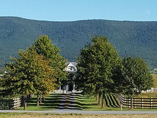 Historic Virginia Farmhouse -Spectacular 360 Views - Edinburg vacation rentals