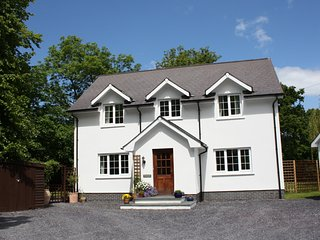 Lovely 4 bedroom House in Llechryd - Llechryd vacation rentals