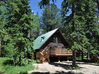 Cozy House with DVD Player and Wireless Internet - Lead vacation rentals