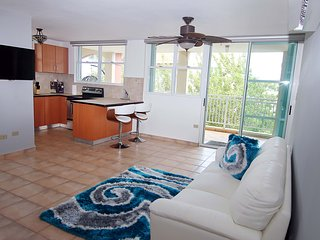 #4 Beachfront Penthouse: 3BR, 2BA - Montones Beach - Isabela vacation rentals