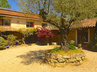 The Barn, Domaine de Puget - 6 to 12 guests - Fanjeaux vacation rentals
