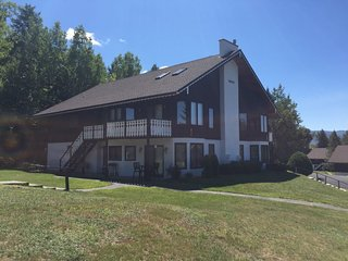 Christmas Mountain condo with views and great location - Bartlett vacation rentals
