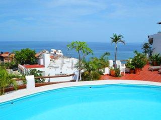 Studio Amapas Romantic Zone Puerto Vallarta - Puerto Vallarta vacation rentals