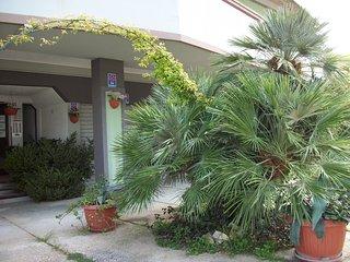 Appartamento bilocale 3 posti letto - App.Primula - Silvi Marina vacation rentals