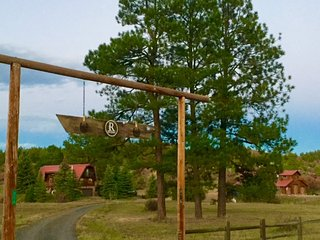3 Level Log Home with Sauna & Views! - Pagosa Springs vacation rentals