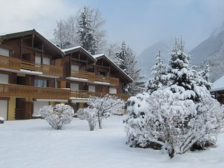 Romantic 1 bedroom Condo in Samoens with Internet Access - Samoens vacation rentals