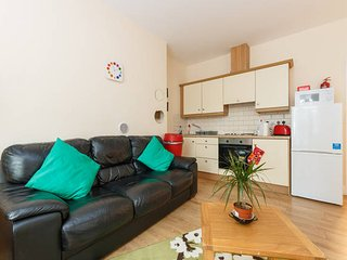 Beautiful Apartment with WiFi - Dublin vacation rentals