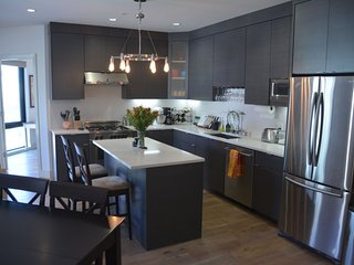 Luxurious Sun-Lit Condominium in the Heart of Prime Duboce Triangle - San Francisco Bay Area vacation rentals
