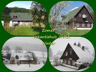 Schitterend Vakantiehuis JIVKA met omheinde tuin - Jivka vacation rentals