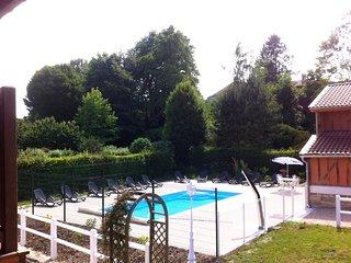 Grand Gîte 15 personnes lac du Der Champagne - Louvemont vacation rentals