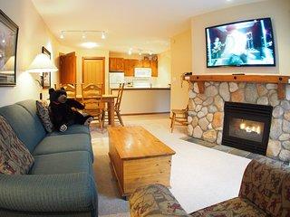 Fireside Lodge Village Center - 302 - Sun Peaks vacation rentals