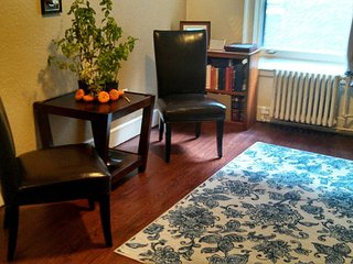 Downtown Single Bedroom Apartment - Saint Paul vacation rentals