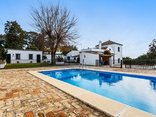 Beautiful villa near Seville with pool - Olivares vacation rentals