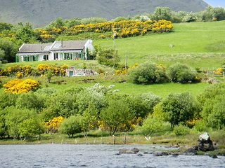 Sunny and spacious semi-detached house in verdant rural Ireland with magnificent view of Lough Mask - Shanafaraghaun vacation rentals
