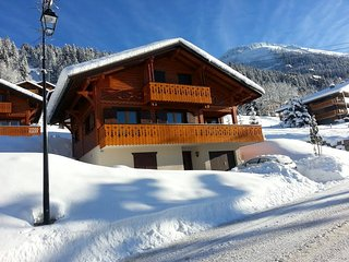 Amazing chalet next to the skilift with nice views - Chatel vacation rentals