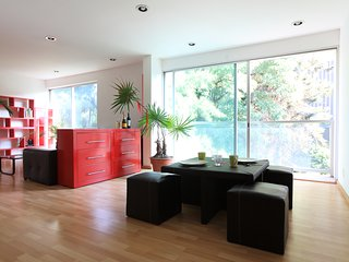 Bright, modern 2 bedroom apartment in Roma Nte. - Mexico City vacation rentals