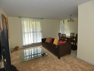 2 bedroom Condo with Television in Gatineau - Gatineau vacation rentals