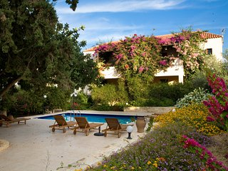 Nice 3 bedroom Villa in Douliana - Douliana vacation rentals