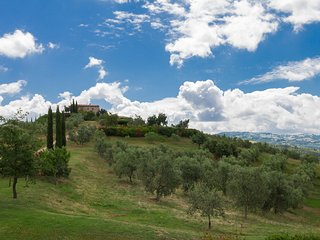 Nice 1 bedroom House in Scansano - Scansano vacation rentals