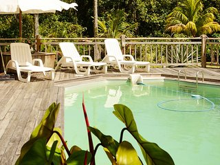 Spacious villa on the north-west coast of Basse Terre with private pool, near Grande Anse beach - Deshaies vacation rentals
