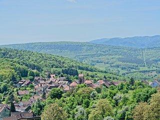 Magnifique studio 2* sur les hauteurs d'Osenbach, vue panoramique !! - Osenbach vacation rentals