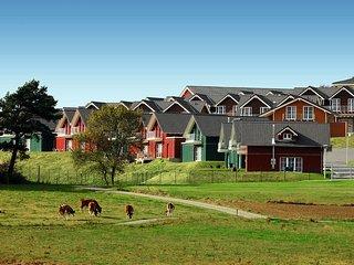 3 bedroom House with Internet Access in Adenau - Adenau vacation rentals