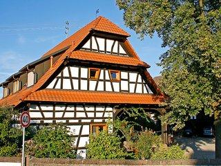 1 bedroom Apartment with Television in Altenheim - Altenheim vacation rentals