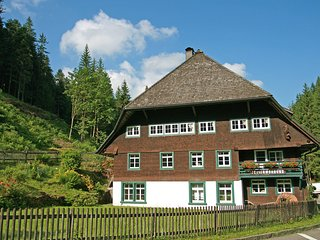Cozy 2 bedroom Furtwangen Apartment with Internet Access - Furtwangen vacation rentals